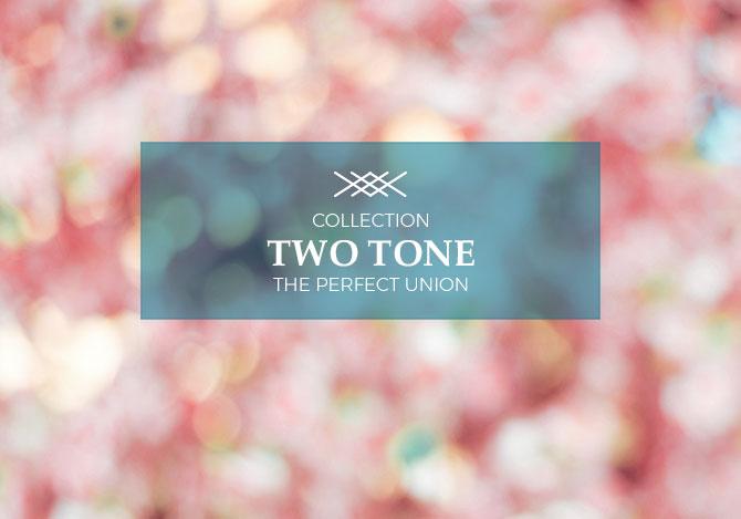 Two Tone Jewelry