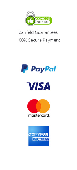 PayPal VISA MasterCard AmericanExpress with Comodo SSL Secure